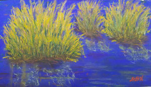 Reeds and Water | Diana Northrop